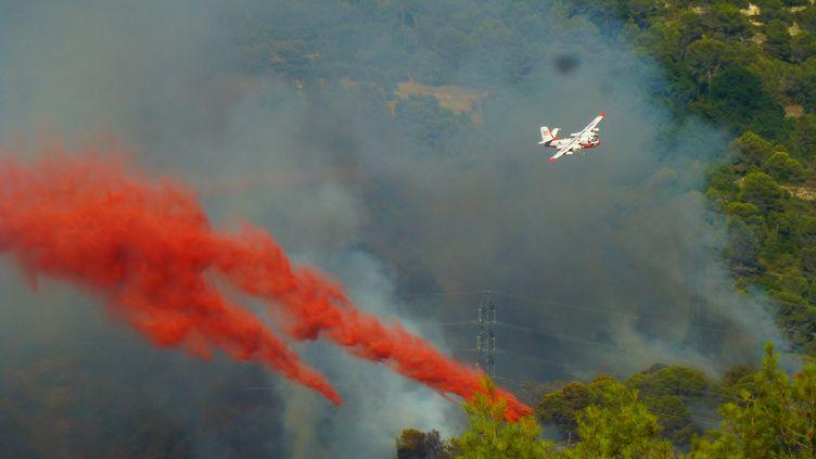 Un avion bombardier Tracker lutte contre l'incendie de Castagniers, près de Nice (Alpes-Maritimes), lundi 17 juillet 2017. (ALAIN SORIANO / CITIZENSIDE / AFP)