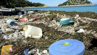 Des déchets plastiques sur le littoral de l'île de Korcula en Croatie, le 24 septembre 2014. (ROLF HAID / DPA / AFP)