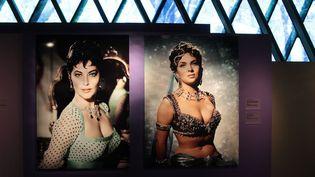 Les images de stars blondes, brunes ou rousses -Jane Fonda, Michèle Morgan, Brigitte Bardot, Ava Gardner ou Isabelle Huppert- rappellent l'importance des images en papier glacé en Occident. (ELODIE DROUARD / FTVI)