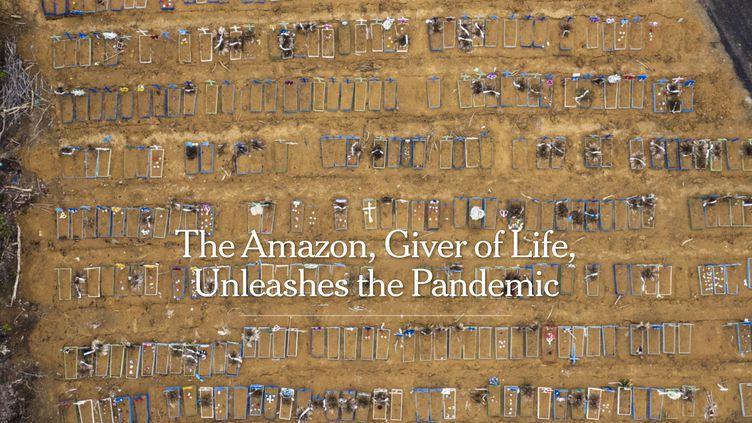 """Le reportage The Amazon, giver of life, unleashes the Pandemic"""" du New York Times, lauréat du Visa d'or de l'information numérique 2021. (NYTIMES.COM)"""