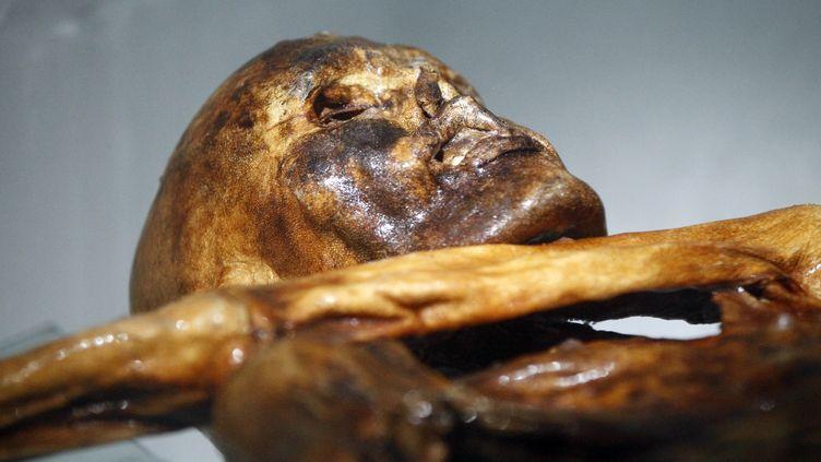 Otzi, découvert en 1991 dans le glacier italien de la vallée de Schnal examiné au Musée de Bolzano en le 28 février 2011 (ANDREA SOLERO / AFP)