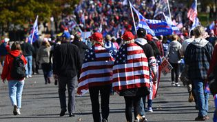 Des manifestants pro-Trump participent à un rassemblement à Washington, aux Etats-Unis, le 14 novembre 2020. (ANDREW CABALLERO-REYNOLDS / AFP)