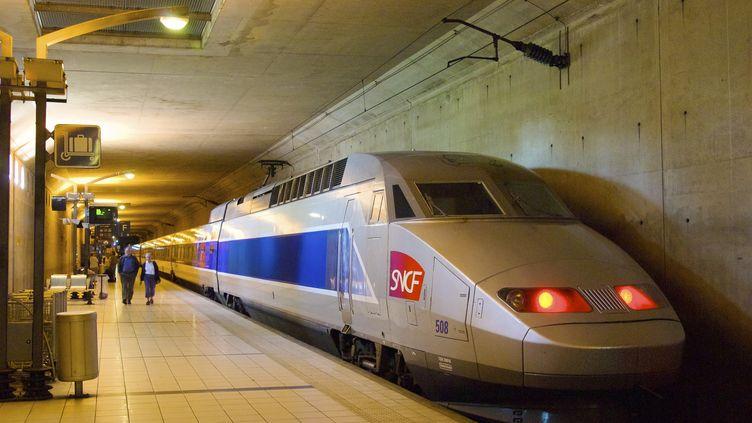 La gare TGV de Massy en région parisienne. (photo d'illustration) (FRANCOIS RENAULT / PHOTONONSTOP)