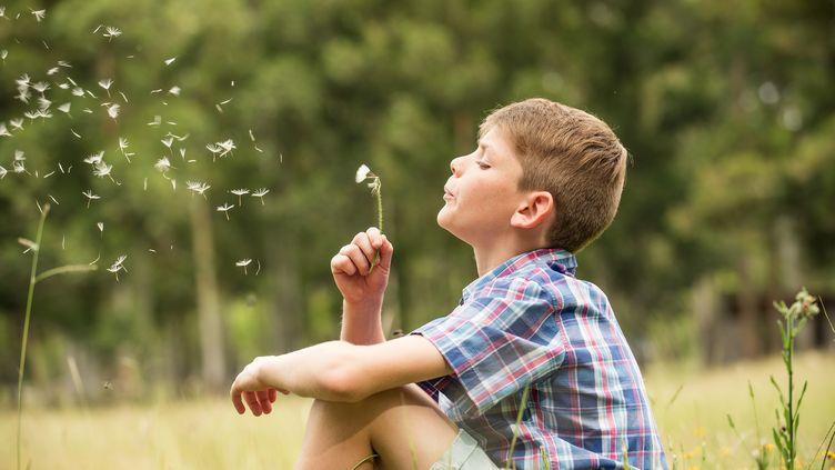 Un enfant souffle sur une fleur de pissenlit. (ERIC AUDRAS / ALTOPRESS / AFP)