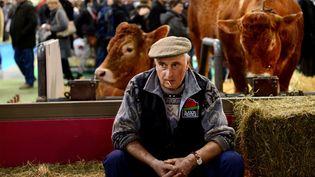 Un éleveur de vaches de race Salers, le 23 février 2014, au Salon de l'agriculture, à Paris. (MAXPPP)