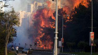 Des habitants deHaïfa (Israël) fuient les incendies, le 24 novembre 2016 (ARIEL SCHALIT / AP / SIPA)