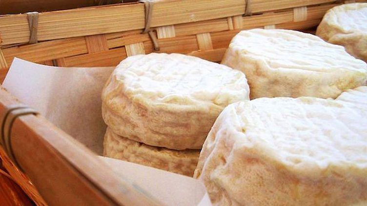 Escherichia coli : rappel de nouveaux fromages (Crédits Photo : WikiCommons / © Varaine)