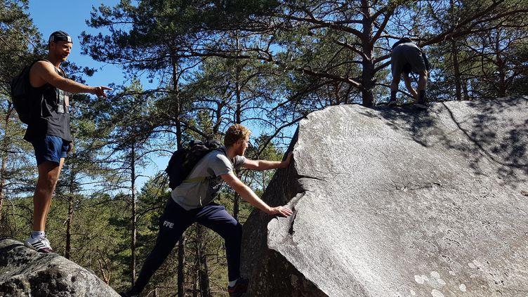 Cyril Verbrackel et Julien Mertine à la conquête du parcours montagne de Fontainebleau. (CECILIA BERDER / FRANCEINFO / RADIO FRANCE)