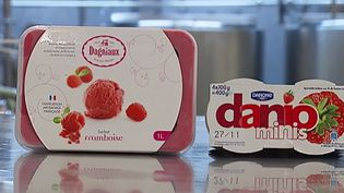 Un sorbet de la marque Dagniaux, et un pot de yaourt de la marque Danio. ( FRANCE 2)