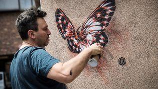 L'artiste C215 peignant des papillons sur les murs de l'hôpital psychiatrique Sainte Anne à Paris, le 18 juin 2019 (THOMAS SAMSON / AFP)