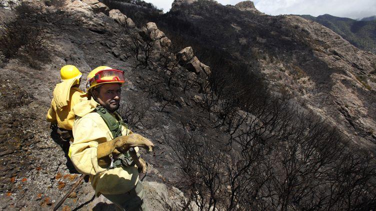 Des pompiers après le passage du feu au Parc national de Garajonay, dans l'île de la Gomera, le 7 août. (DESIREE MARTIN / AFP)