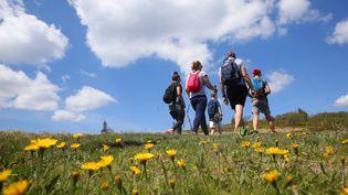 Avec le beau temps, les randonneurs ont pris d'assaut les chemins du massif de la Chartreuse. (photo d'illustration) (VANESSA MEYER / MAXPPP)