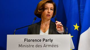 Florence Parly, ministre des Armées, lors d'uneconférence de presse, le 26 novembre 2019, à Paris. (CHRISTOPHE ARCHAMBAULT / AFP)