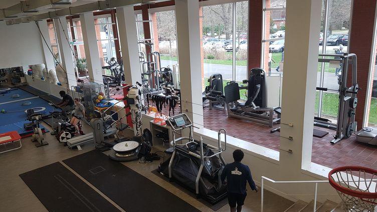 La salle kiné à l'INSEP pour remettre le corps des atlètes en état de marche (CECILIA BERDER / FRANCEINFO / RADIO FRANCE)