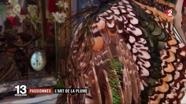 Plumassier, un art ancien en voie de disparition