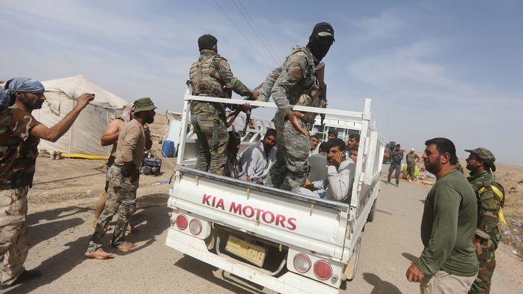 Des combattants chiites irakiens au nord-ouest de Bagdad, le 27 mai 2015. (AHMAD AL-RUBAYE / AFP)