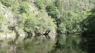 Auvergne (FRANCE 2)