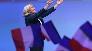 Marine Le Pen lors d'un meeting en janvier 2019 à Paris. (JACQUES DEMARTHON / AFP)
