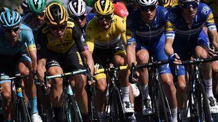 Des coureurs cyclistes sur le Tour de France entre Albi et Toulouse, le 17 juillet 2019. (MARCO BERTORELLO / AFP)
