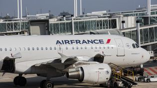 L'avion qui assure la liaison Paris-Conakry a dû être désinfecté. (  MAXPPP)