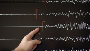 Les données d'un sismographe. (Photo d'illustration) (FREDERICK FLORIN / AFP)
