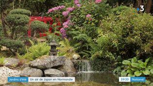 Jardins d'été : un air de Japon souffle en Normandie (FRANCE 3)