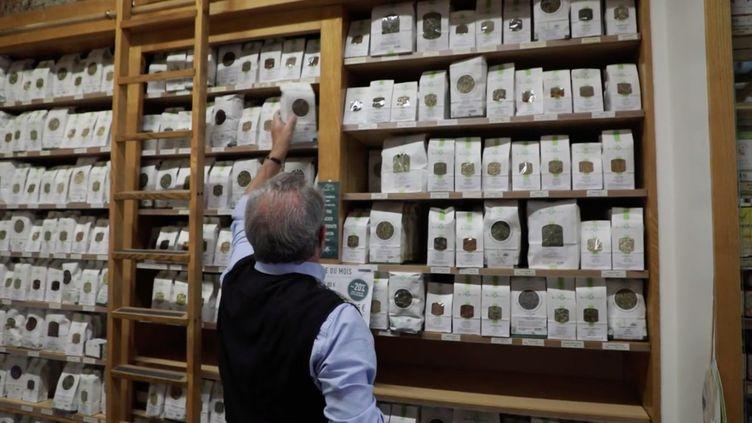 Vrai ou Fake : les tisanes à base de plantes sont-elles efficaces ? (FRANCEINFO)
