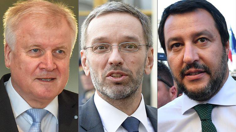 De gauche à droite, les ministresde l'Intérieur allemand (Horst Seehofer), autrichien (Herbert Kickl) et italien (Matteo Salvini). (CHRISTOF STACHE / HERBERT NEUBAUER / Andreas SOLARO / AFP / APA)