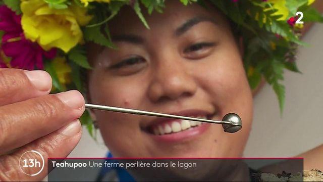 Tahiti : une ferme perlière dans le lagon