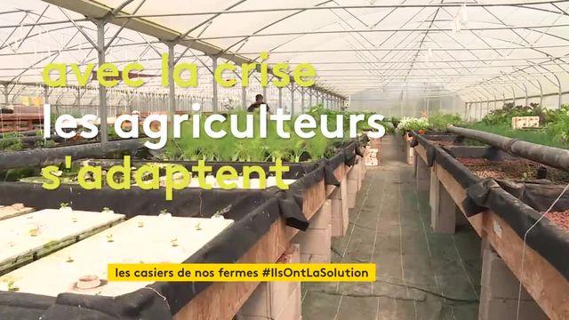 des casiers pour des produits de la ferme