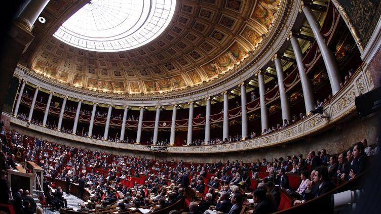 L'hémicycle de l'Assemblée nationale à Paris, le 11 juillet 2012. (PIERRE VERDY / AFP)