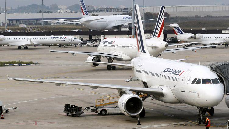 Des avions au sol à l'aéroport d'Orly (Val-de-Marne), le 29 octobre 2011, jour de grève des agents de sûreté. (THOMAS SAMSON / AFP)