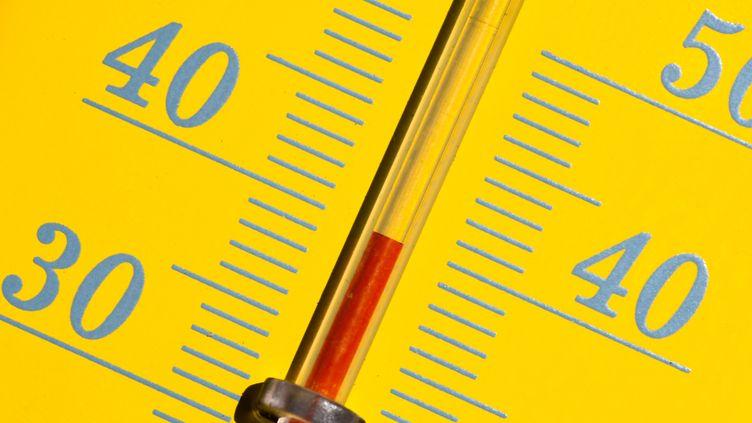 Les températures estivales deviennent de plus en plus souvent caniculairesen France, comme le montre ce thermomètre à Rennes (Ille-et-Vilaine), le 27 juin 2019. (DAMIEN MEYER / AFP)
