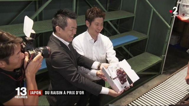 Japon : une grappe de raisins vendue 10 000 euros aux enchères