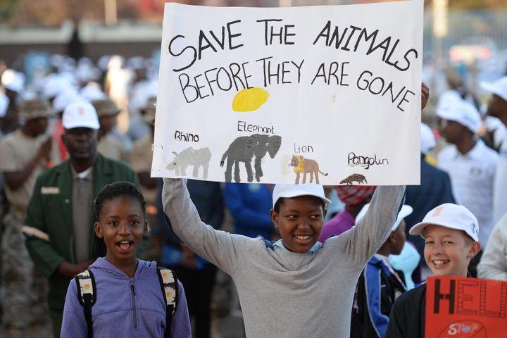 """Des enfants portent une pancarte engageant à """"sauver les animaux avant qu'ils ne disparaissent"""" au cours d'une marche mondiale en faveur des éléphants, rhinocéros et lions à Gaborone, la capitale du Botswana, le 7 octobre 2017. (MONIRUL BHUIYAN / AFP)"""