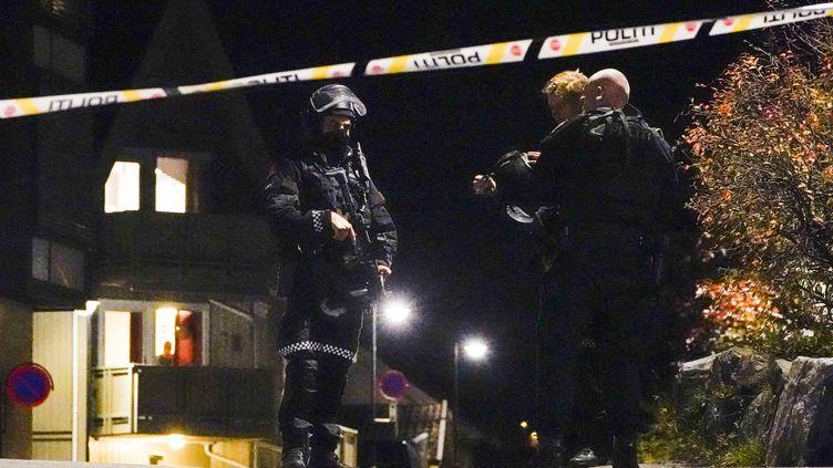 La police intervient après une attaque à l'arc et aux flèches à Kongsberg, en Norvège, le 13 octobre 2021. (HAKON MOSVOLD LARSEN / NTB / AFP)