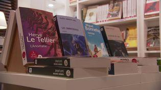 """La librairie """"Des grands caracatères"""" proposent 600 titres adaptés à la lecture des malvoyants (O. Badin / France Télévisions)"""