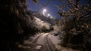 Des arbres sous la neige, le 15 novembre 2019 à Givors (Rhône). (JEAN-PHILIPPE KSIAZEK / AFP)