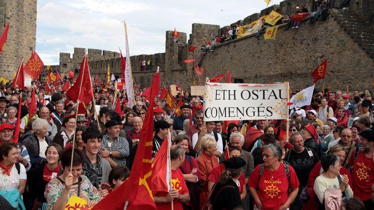 Des centaines de personnes défilent à Carcassonne (Aude), pour défendre l'apprentissage de l'occitan, en 2009. (MAXPPP)