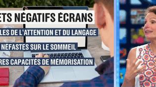 Exposition aux écrans (France 2)