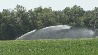 Gaspillage de l'eau : les agriculteurs dans le rouge selon la Cour des comptes européennes (FRANCEINFO)