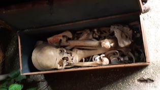 Ossements humains aux puces de Saint-Ouen (Seine-Saint-Denis), le 7 mars 2020. (ELODIE GUEGUEN / RADIO FRANCE)