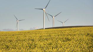 Des éoliennes tournent dans la province du Cap près de Caledon en Afrique du Sud (photo du 28 août 2019). (RODGER BOSCH / AFP)