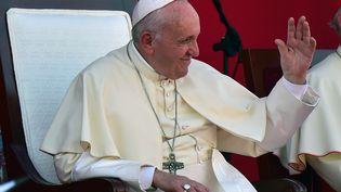 Le pape François lors de son déplacement au Panama, le 27 janvier 2019. (JOHAN ORDONEZ / AFP)