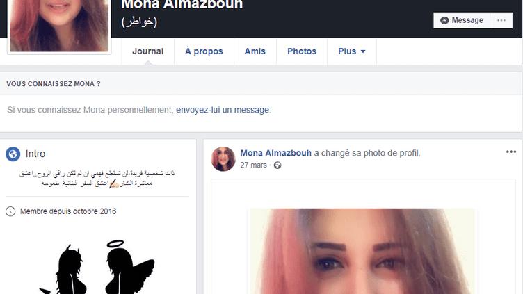 Capture d'écran du profil Facebook deMona al-Mazbouh, une touriste libanaise arrêtée fin mai 2018 au Caire pour avoir critiqué les Egyptiens sur le réseau social. (FACEBOOK)