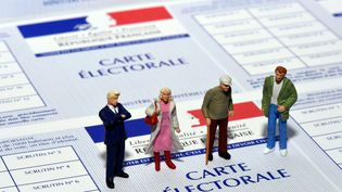 Les prochaines élections législatives auront lieu les 11 et 18 juin 2017. (MAXPPP)