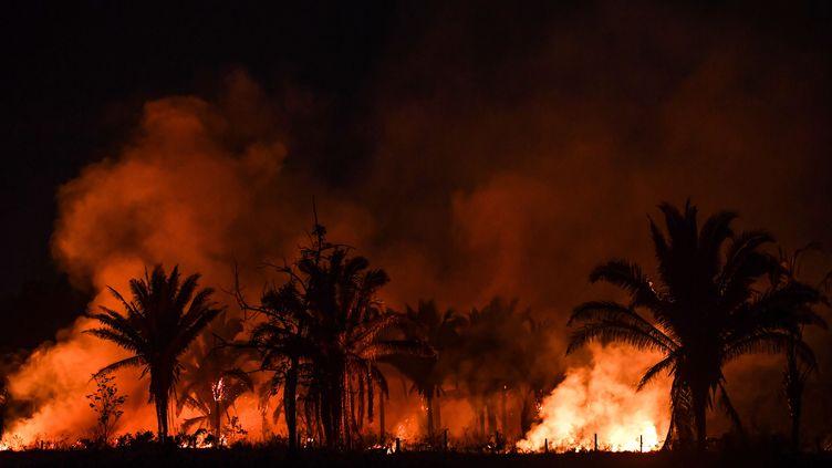 Un incendie près d'Itaituba, dans l'Etat brésilien de Para, le 10 septembre 2019. (NELSON ALMEIDA / AFP)