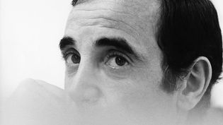 Votez pour votre chanson préférée de Charles Aznavour (B.N.I.P.P / AFP)