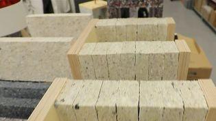 Une architecte a eu l'idée de recycler des vêtements pour faire des briques. (CAPTURE D'ÉCRAN FRANCE 2)