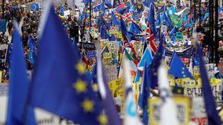 Des Britanniques manifestent pour demander un nouveau référendum sur le Brexit, le 23 mars 2019 à Londres. (PETER NICHOLLS / REUTERS)